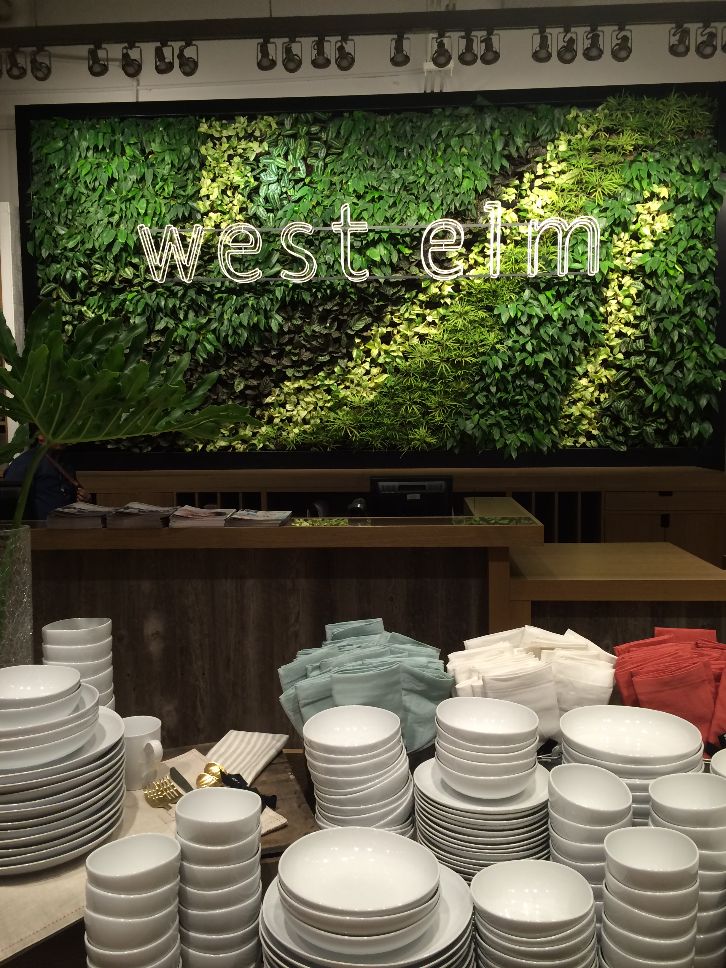 Lovely vertical garden of real plants inside West Elm's very first store in Asia!