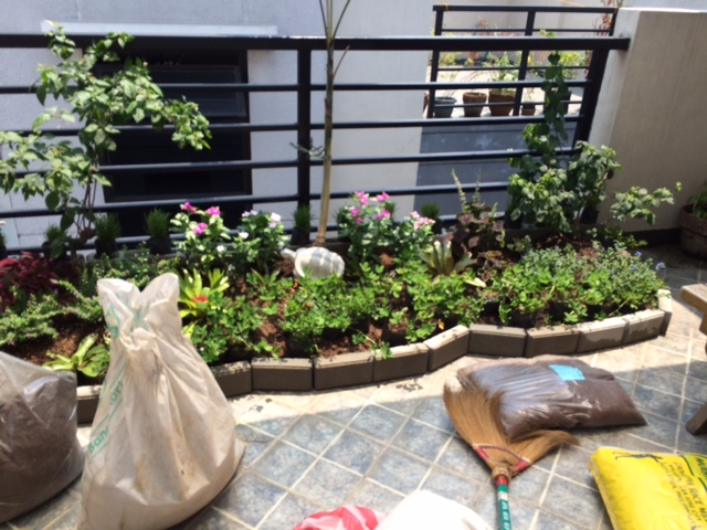 We placed the raised bed garden next to the railing, in between two water drains.