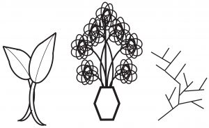 Illustration of organic and natural objects like plants and twigs