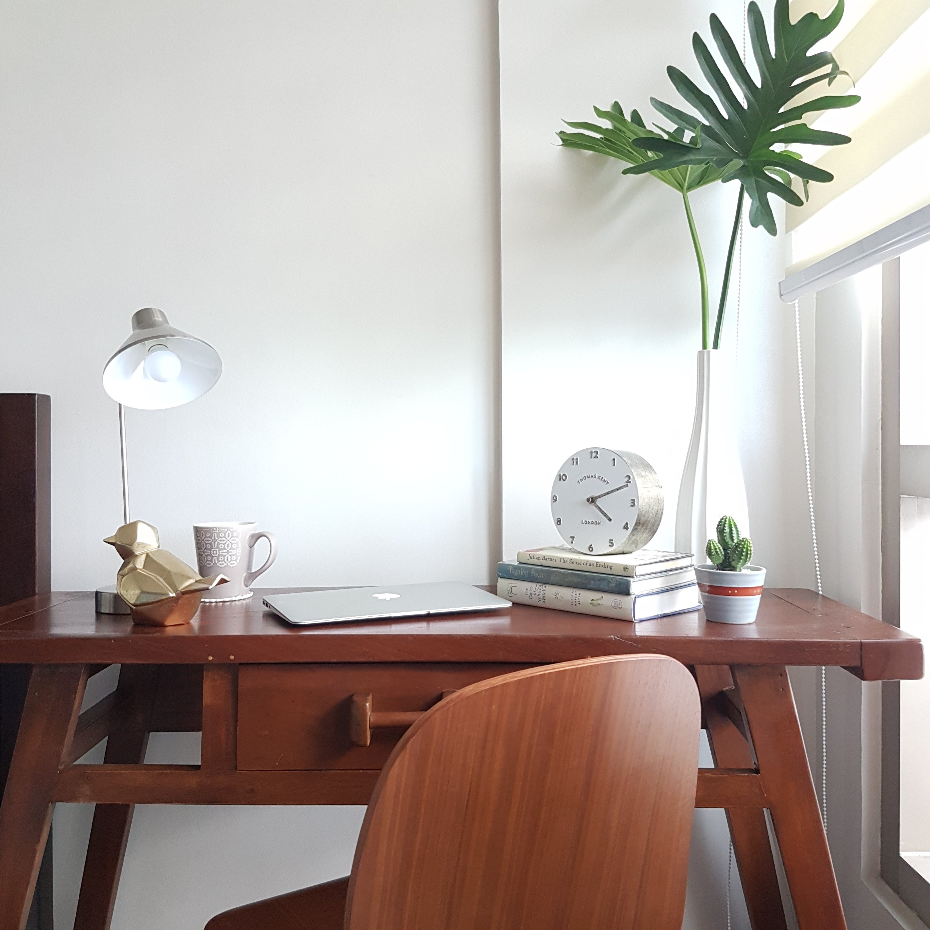 wooden work desk and chair with plant cuttings on top